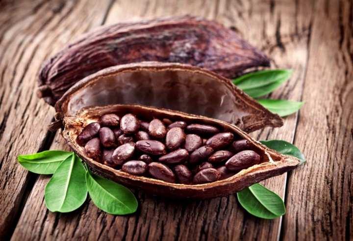Химический состав какао бобов