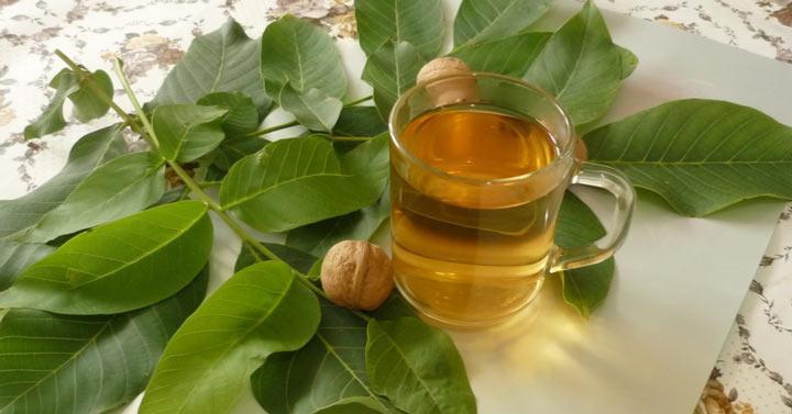 Как сделать ореховое масло в домашних условиях из грецких орехов