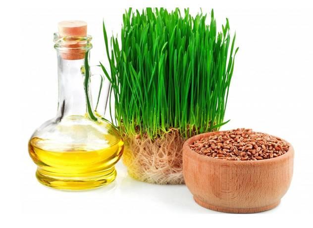 Свойства масла из ростков пшеницы