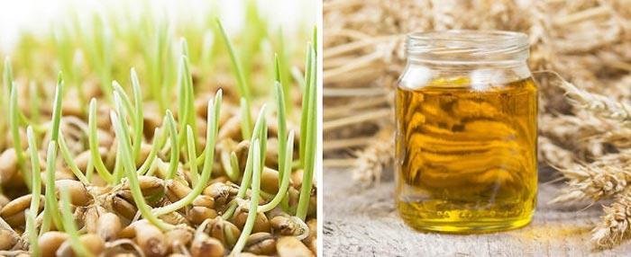 Как применять масло зародышей пшеницы для лица от морщин (рецепты масок)