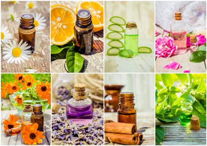 Свойства и применение эфирного масла гвоздики в косметологии, кулинарии и лечебных целях