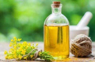 Полезных свойства рапсового масла