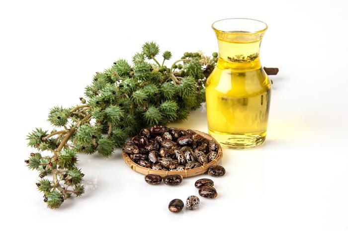 Чистка кишечника и печени касторовым маслом