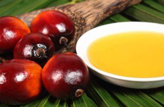Масло плодов пальмы