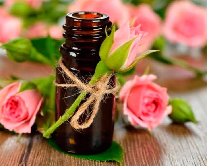 Применение масла розы