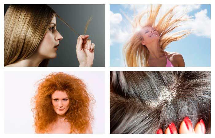 Польза кедрового масла для волос