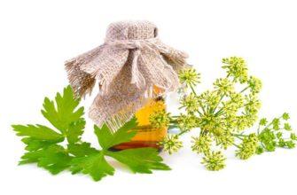 Применение масла петрушки для лица